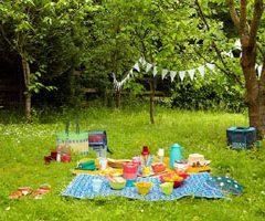 picnic300